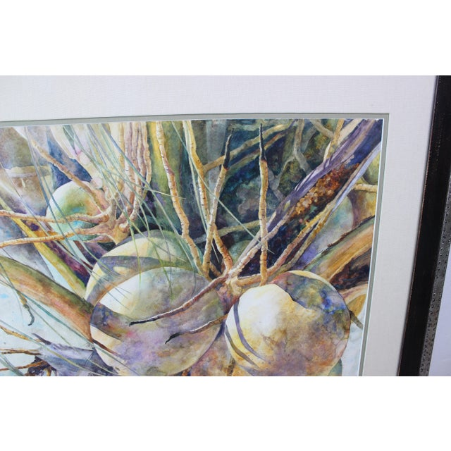 """Vintage Barbara Shipman Watercolor Painting """"Lots of Coconuts"""" For Sale In West Palm - Image 6 of 13"""