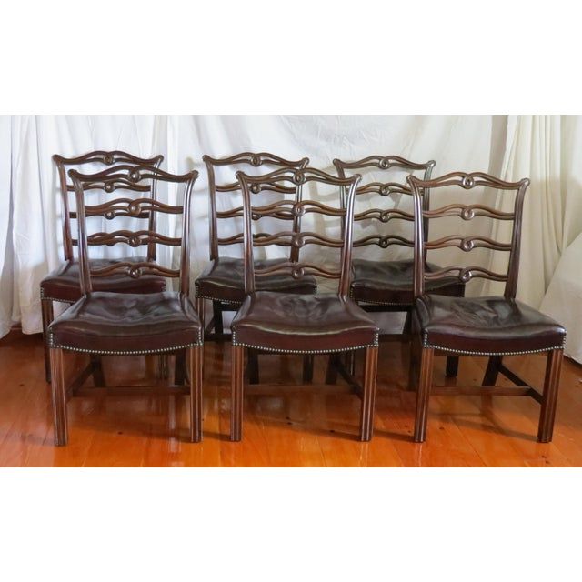 Chippendale Chippendale Ribbon Back Dining Chairs - Set of 8 For Sale - Image 3 of 13