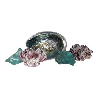 Natural Coastal Shell/Sea Glass Collection - Set of 5