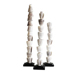 Papua Tiger Shell Stacks - Set of 3 For Sale