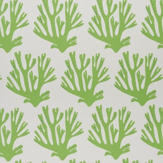 Schumacher x Molly Mahon Coral Wallpaper in Green For Sale