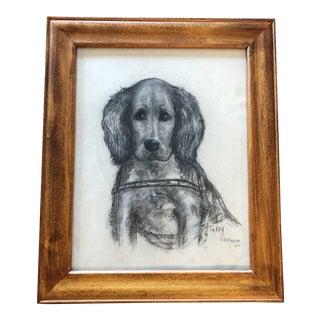 Vintage Original Charcoal Drawing Setter Dog Portrait For Sale