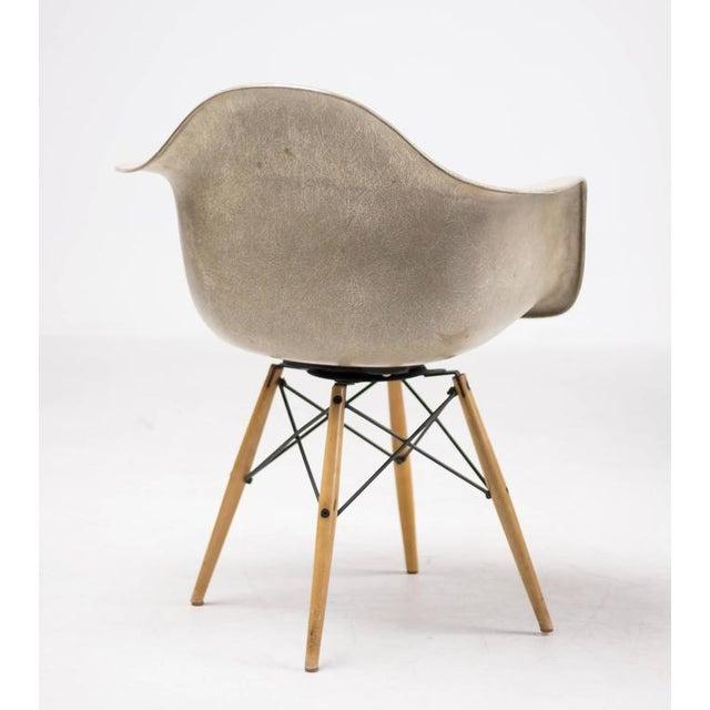 Charles and Ray Eames 1st Generation Rope Edge Fiberglass PAW dowel leg fiberglass swivel armchair for Zenith Plastics...
