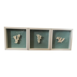Coral Shadow Boxes - Set of 3
