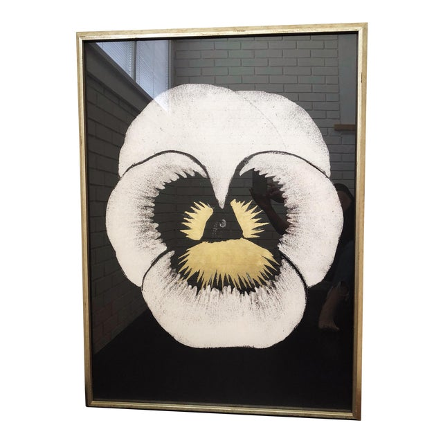 "Modern ""Pansies 2"" Print by Natural Curiosities For Sale"