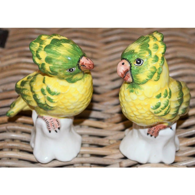 Green 1970s Italian Majolica Pottery Parakeets - a Pair For Sale - Image 8 of 11