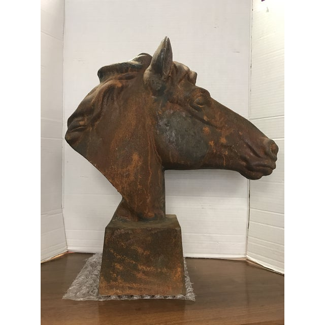 Life size cast iron horse head with a rusted patina finish. Not signed.