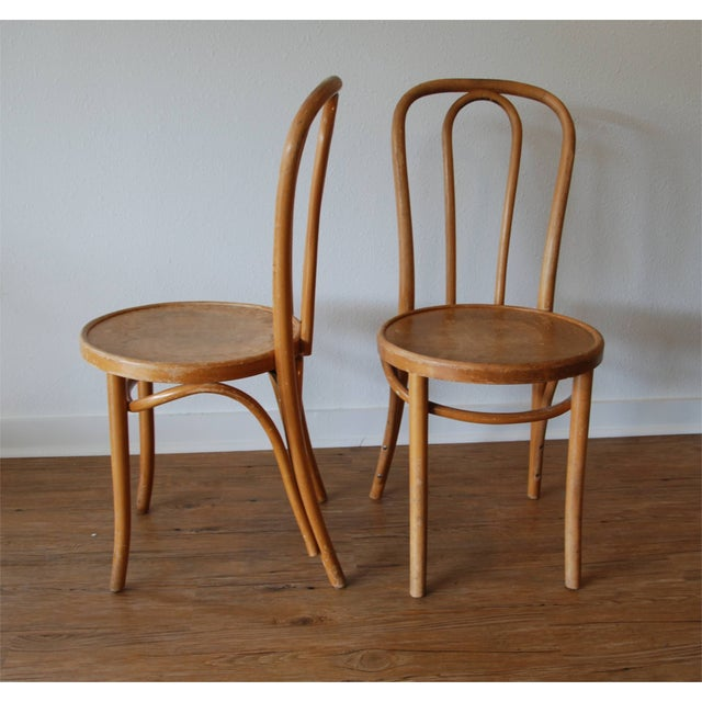 Thonet Cafe Chairs - Set of 5 For Sale - Image 4 of 6
