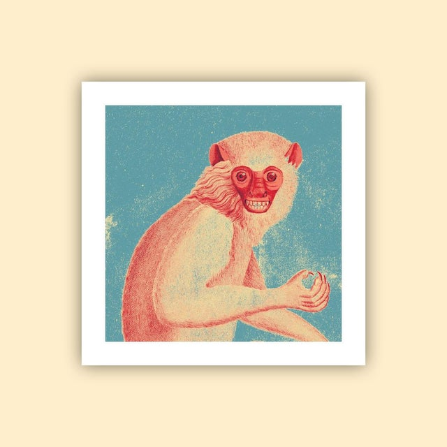 Boho Chic Antique 'Red Monkey' Archival Print For Sale - Image 3 of 4