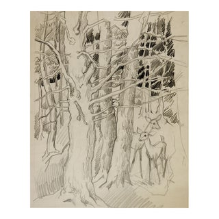 George Baer Pencil Study of Deer in Forest For Sale