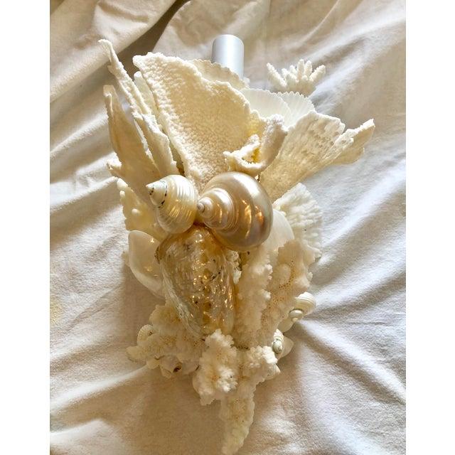 Christa's South Seashells Organic Modern Christa's South Seashells One-Light Coral Sconces - a Pair For Sale - Image 4 of 12