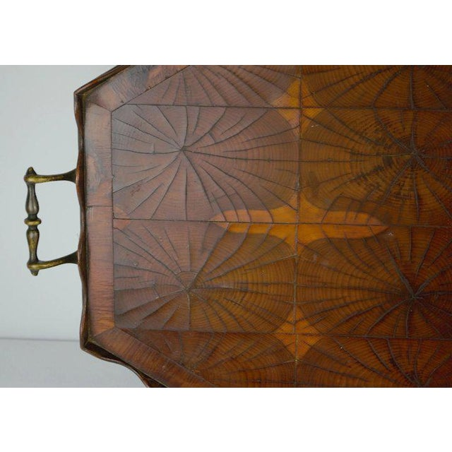 Brown Oyster Veneer Tray For Sale - Image 8 of 13