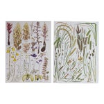 Vintage Botanical Wheat Prints - A Pair