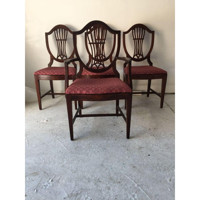Vintage Sheraton Shield-Back Flame Mahogany Dining Chairs ...
