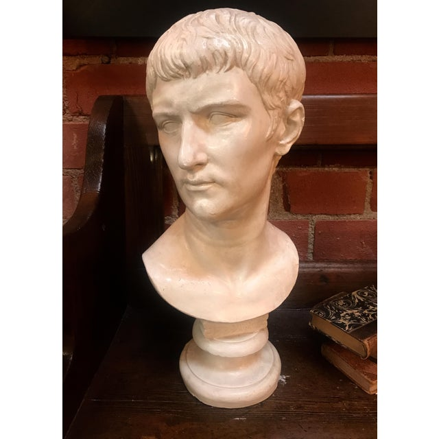 Plaster Bust of Ottaviano Augusto, Roman Emperor, Plaster Portrait, Copy in Scale 1/1 For Sale - Image 7 of 7