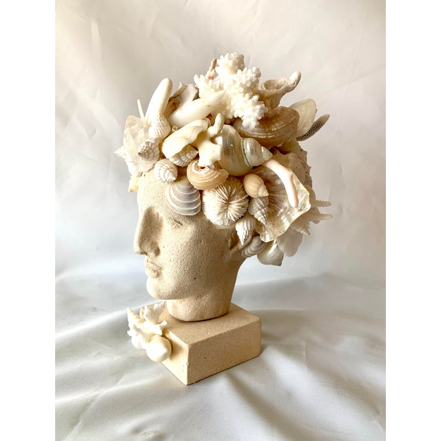 Hygiea Shell Encrusted Head For Sale In West Palm - Image 6 of 9