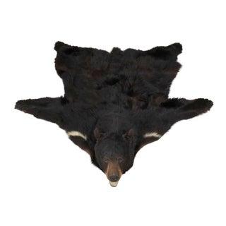 Vintage Black Bear Rug For Sale