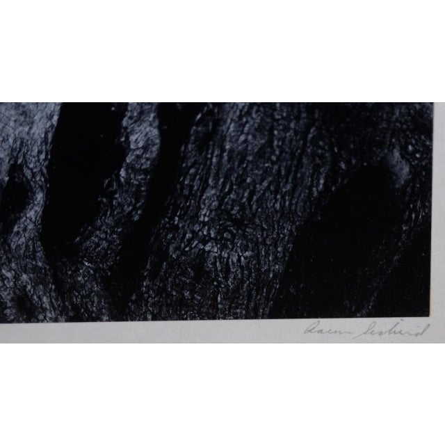 Aaron Siskind (American, 1903-1991) Black & White Photograph C.1970 For Sale - Image 4 of 9