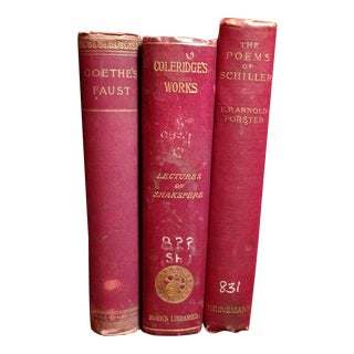 Goethe, Schiller, Coleridge: Poetry Classics Book Bundle - Set of 3 For Sale