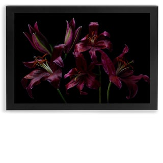 """The Angels, Lilies No. 1"" Framed Print"