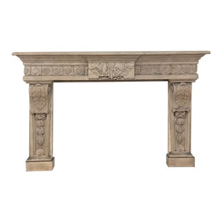 19th Century French Louis XIV Fireplace Surround ~ Mantel For Sale