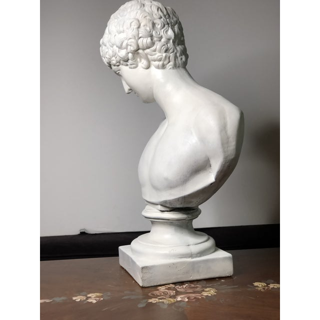 1940s Vintage Neoclassical Style Plaster Bust of Apollo Sculpture For Sale - Image 4 of 12