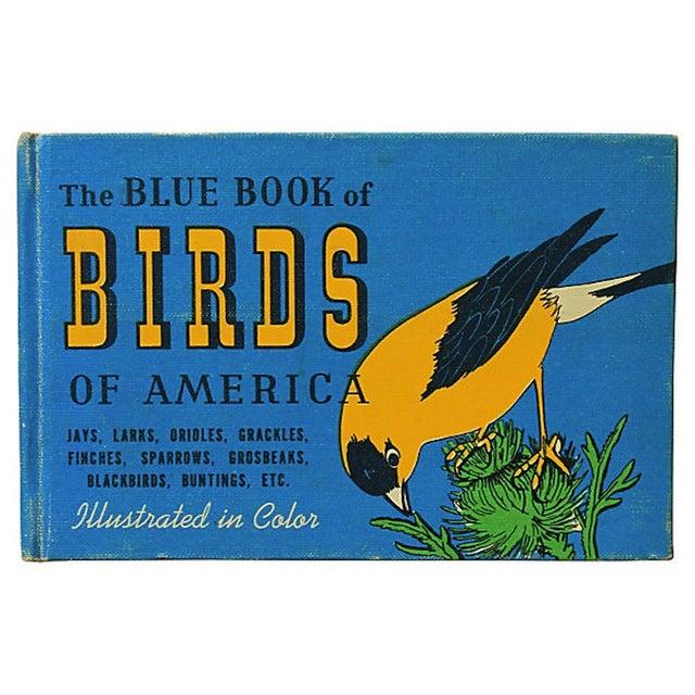 Vintage Blue Book of Birds   Chairish