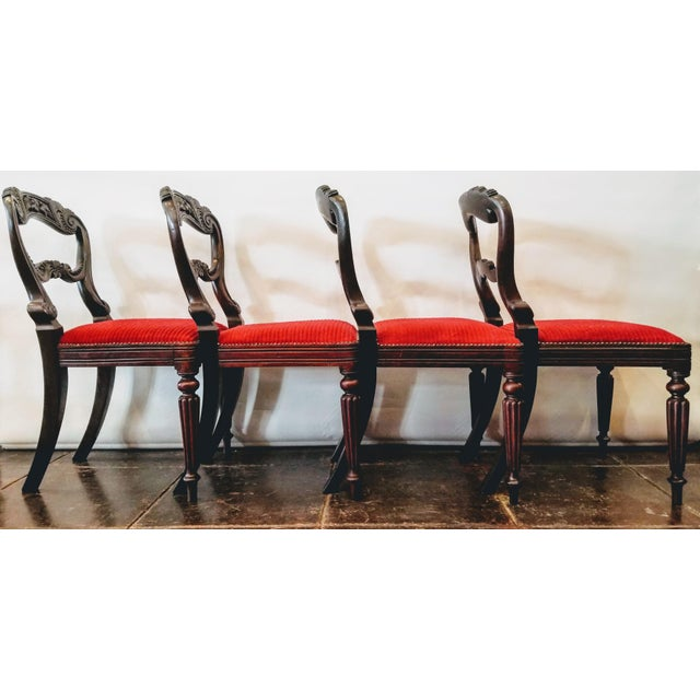 William IV Set of Four Georgian / Regency / William IV / Victorian Rosewood Chairs Attributed to Gillows of Lancaster For Sale - Image 3 of 10