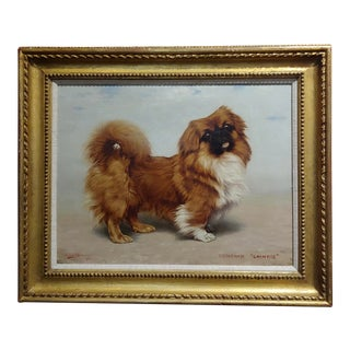 Gabriel Blair -Portrait of a Beautiful Pekingese Dog- Oil Painting-1918 For Sale