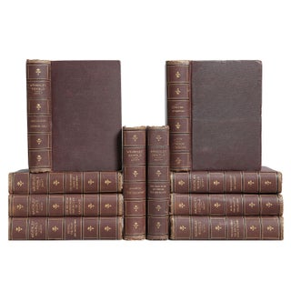 Gilded Antique Novels: Sir Walter Scott - Set of 10