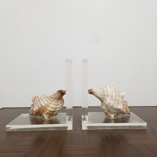 Lucite and Conch Shell Bookends - a Pair Preview