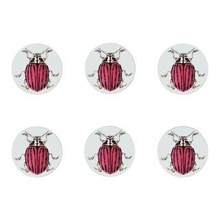 Ophelia Coasters Set of 6 For Sale