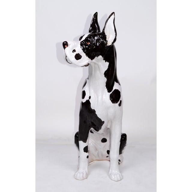 """Stunning Glazed Italian Ceramic life size Great Dane dog statue. Signed underneath """"Italy""""."""