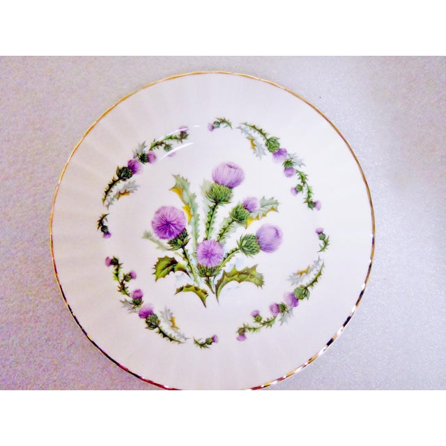 Traditional Staffordshire Bone China Plates, England - Set of 3 For Sale - Image 3 of 10
