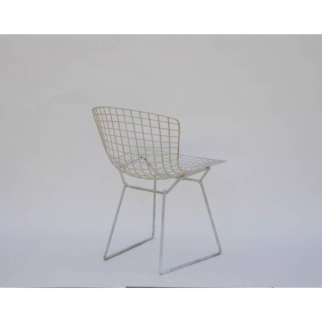 Harry Bertoia Set of Four Original Wire Chairs by Harry Bertoia for Knoll For Sale - Image 4 of 7