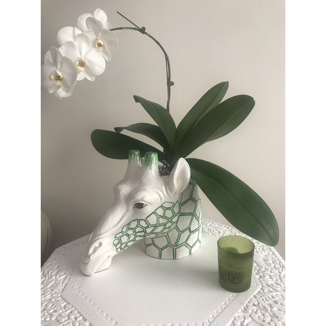 Green and white giraffe planter made in Italy for B. Altman's. Made in the 1960s.