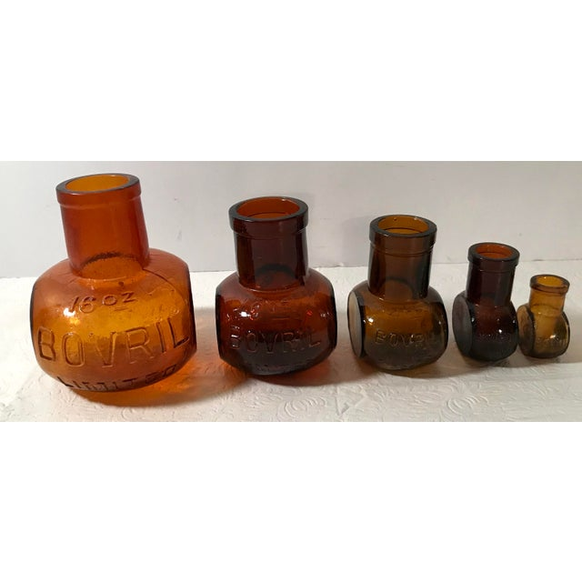 Early 20th Century Antique Brown Bovril Bottles - Set of 5 For Sale - Image 5 of 9