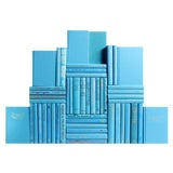 Image of Modern Sky Blue Book Wall, S/50 For Sale