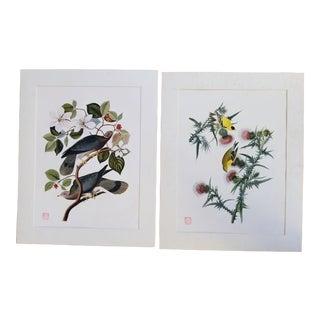 Pair Vintage Audubon Giclee Prints For Sale