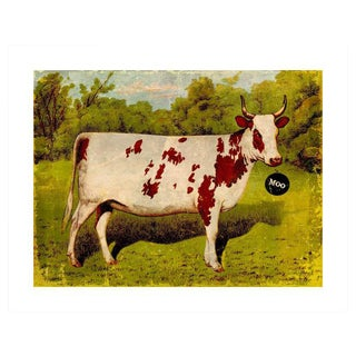 """Archival """"Moo"""" Antique Print For Sale"""