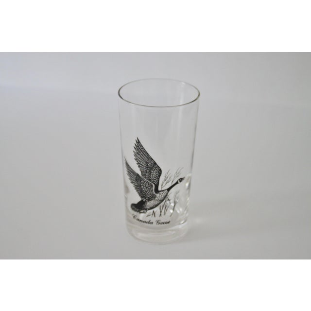 1960s Canada Goose Glasses - Set of 8 For Sale - Image 5 of 5