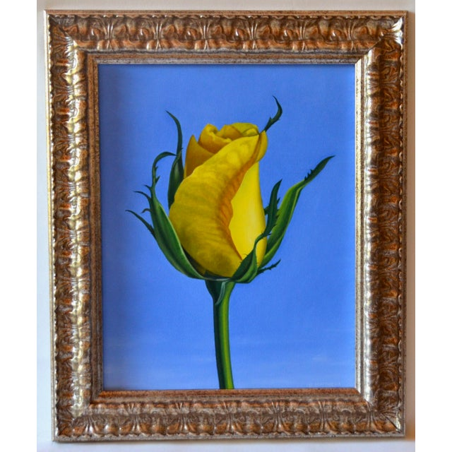 A beautiful oil painting on board of a simple elegant yellow rose by artist, Gary Matthews. Matthews is a graduate of the...