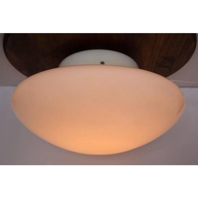 Sergio Mazza 1971 Sergio Mazza 'Magnolia' Ceiling Lamp for Quattrifolio For Sale - Image 4 of 7