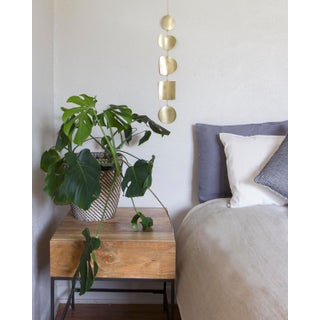 Organic Shaped Brass Wall Hanging Preview