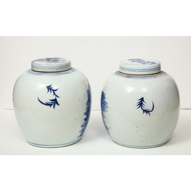 Chinese Export Ginger Jars - A Pair For Sale In New York - Image 6 of 13