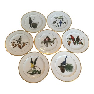 American Songbird Plates - Set of 7 For Sale