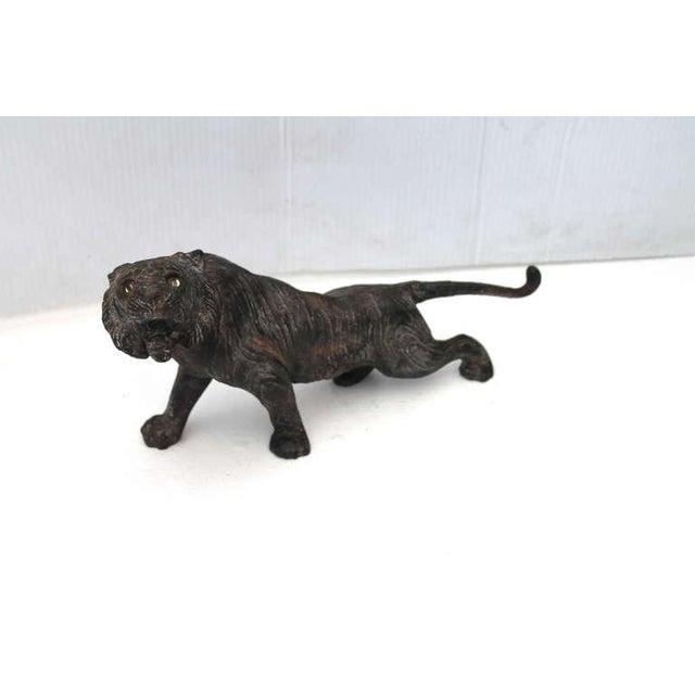 This amazing and fierce 19thc cast iron tiger is on the prowl. It looks like it is coming out of the jungle with its body...