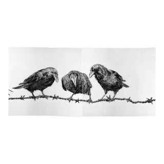Crows on Wire Print