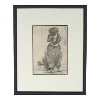 Portrait of a Black Poodle in Charcoal, 1968 For Sale