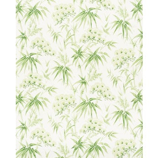 Sample - Schumacher Arita Floral Wallpaper in Leaf For Sale